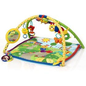 Baby Einstein Seek and Discover Deluxe Activity Gym